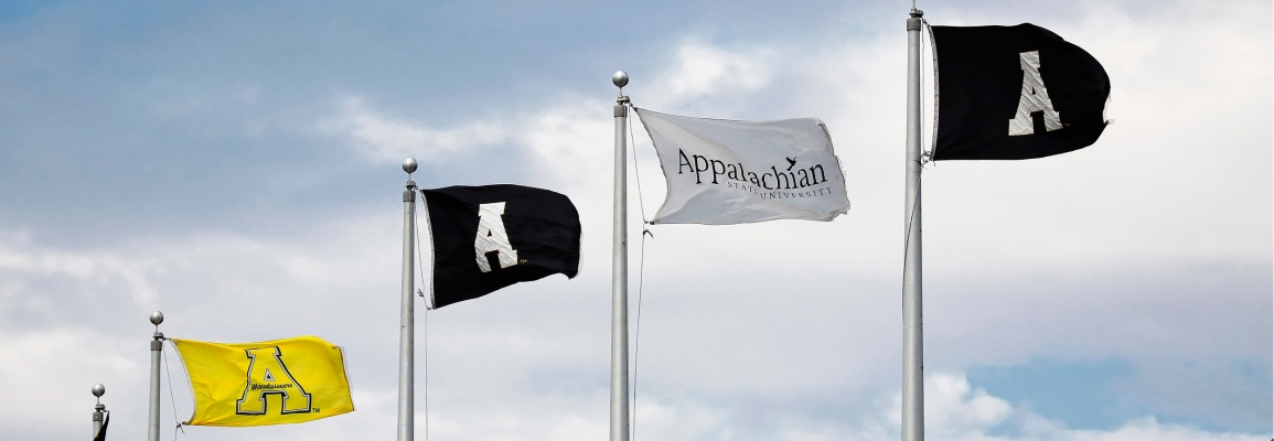 Appalachian State University Flags